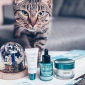 Terminons le week-end avec le magnifique chat de @carlotta__paris , l'occasion de vous rappeler que chez BC on ne teste pas les produits sur les animaux (s'il fallait le rappeler bien sûr 🙄). Merci pour la photo 💙🌀 • Let's enjoy the end of the weekend with this beautiful cat. This allows us to remember you that BC don't make any test on animals (of course). Thanks to @carlotta__paris for this cute pic. . . . #bcparis #bernardcassiere #beautybynature #soinsjeunesse #jeunesse #youth #spiruline #spirulina #science #new #nouveau #bodypositive #iloveme #fermete #proaging #proage #selfacceptance #selflove #reallife #realskin #myskin #positivevibes #seaweed #algae #bienveillance #kindness #selfconfidence #selfcare #catsofinstagram #cute